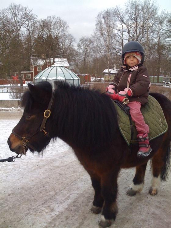 ...riding on a pony!