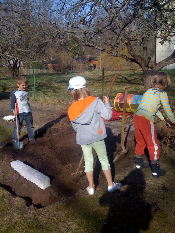 Leon, little Leon and Amelia hard at working digging the vegetable garden.