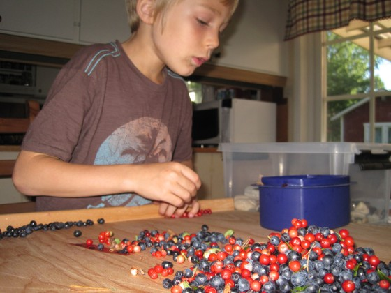 """Rinsing"" through the berries at home"